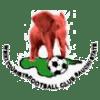 Wikki Tourist FC logo football prediction game